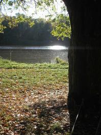 jesien3.jpg