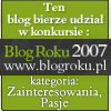 Blog roku 2007