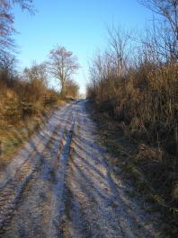 Drzeczkowo - droga