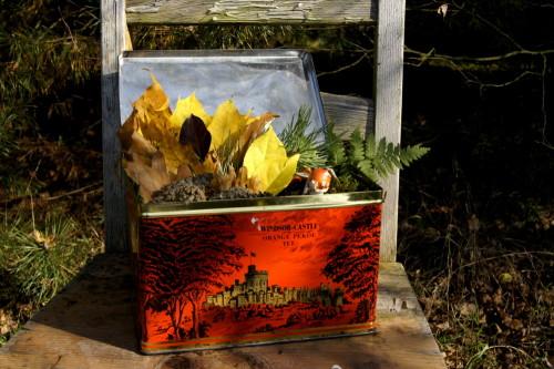 Box full of autumn